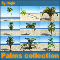 3d model of palms beach