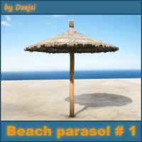 beach parasol max