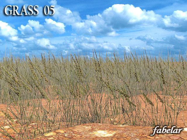 grass5_01off.jpg