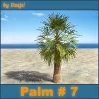 Palm # 7