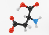 3d model of amino acids