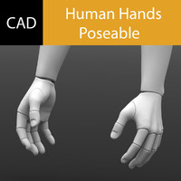 Solidworks Hands Poseable