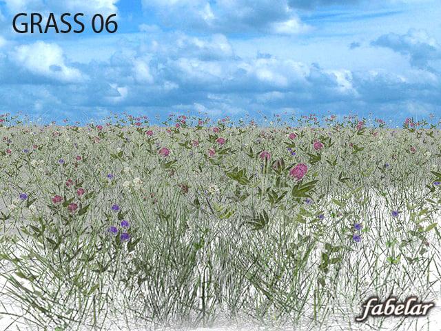 grass6_01off.jpg