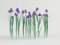3d model iris flower