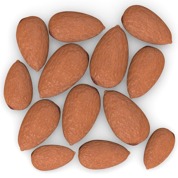 nuts pine almond 3d model - nuts... by bescec