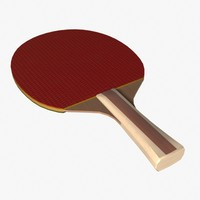 3d paddle model