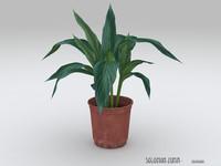green plant v1.0
