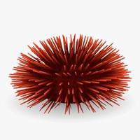 3d model sea urchin