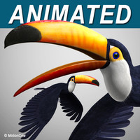 c4d realistic flying toucan
