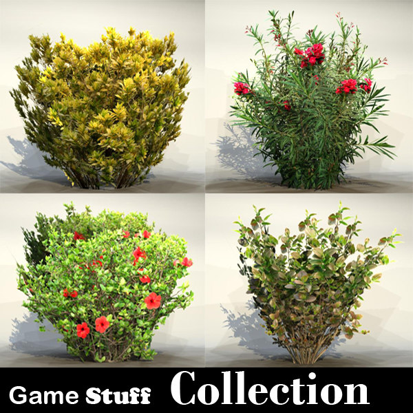 Collection_bush_05.jpg