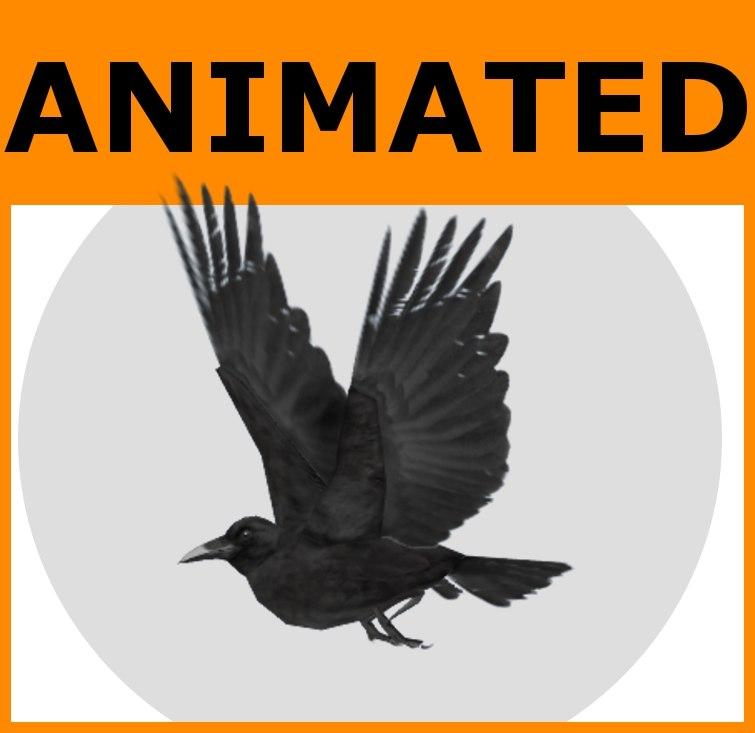 RavenMain.jpg