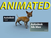 Chihuahua Animated FBX & Max 2008