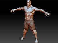 3d model of body fighters