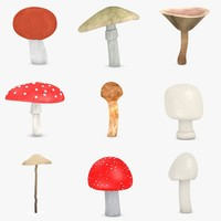 poisonous mushrooms 3d model
