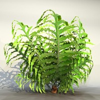 3ds max pc bush