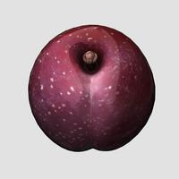 3d model plum