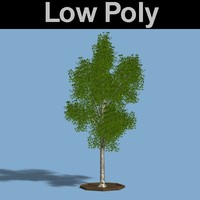 PL Low Poly Silver Birch Tree
