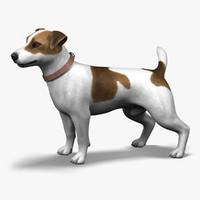 Dog_JRT_lite