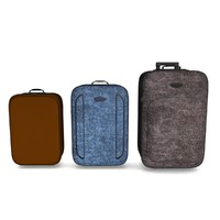 luggage suitcases max