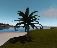 3d tall date palmtree model