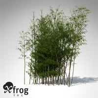 golden bamboo plant 3d model
