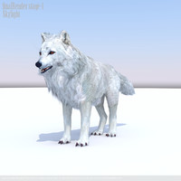 arctic wolf x