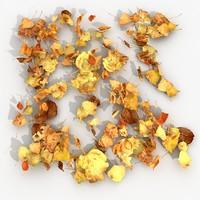3d dry leaves model