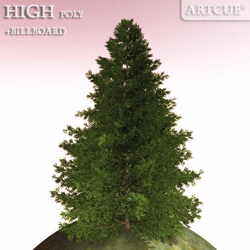 tree_051-a.jpg