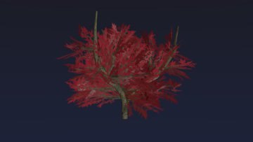 Red Amur Maple Tree (low poly)