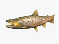 3d trout fish
