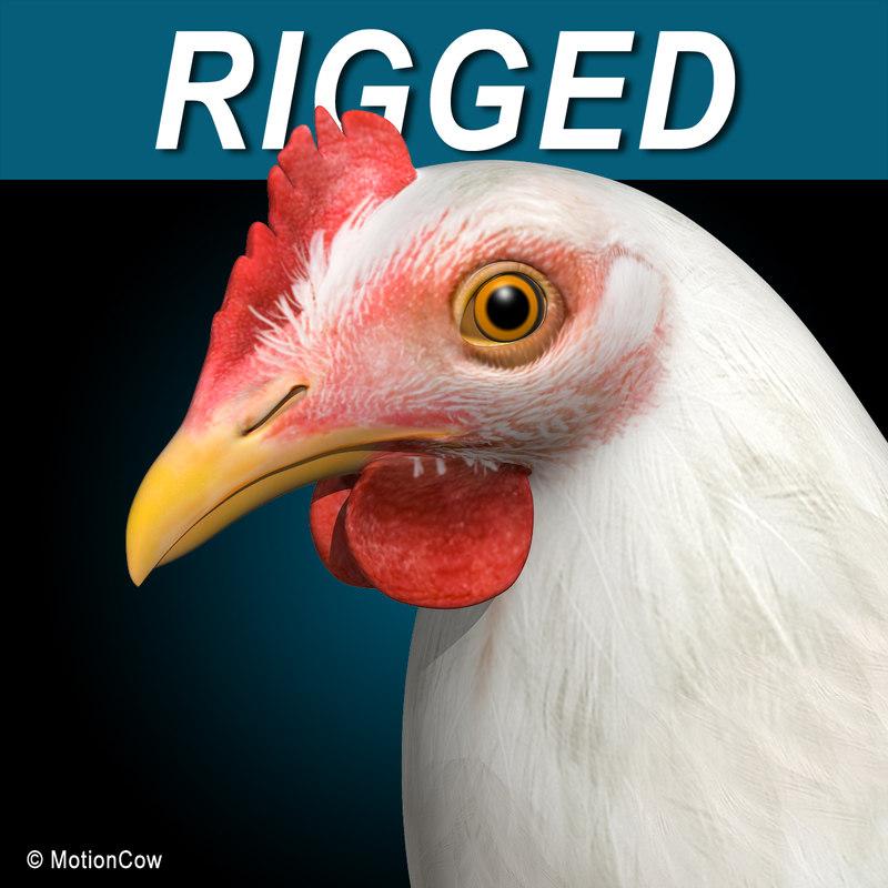 Chicken_White_AA.jpg