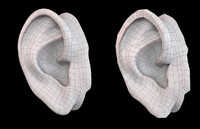 3ds max realistically human ear