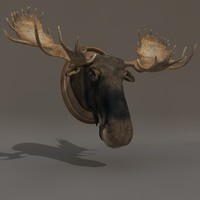 3d model moose head