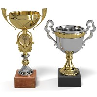max winner cup