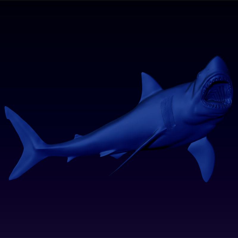 Great-White-Shark-main-view.jpg