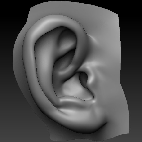 perfect_ear_image_01.jpg