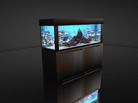 Salt Water Fish Tank