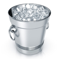 3d modeled ice bucket