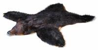 Skin bear