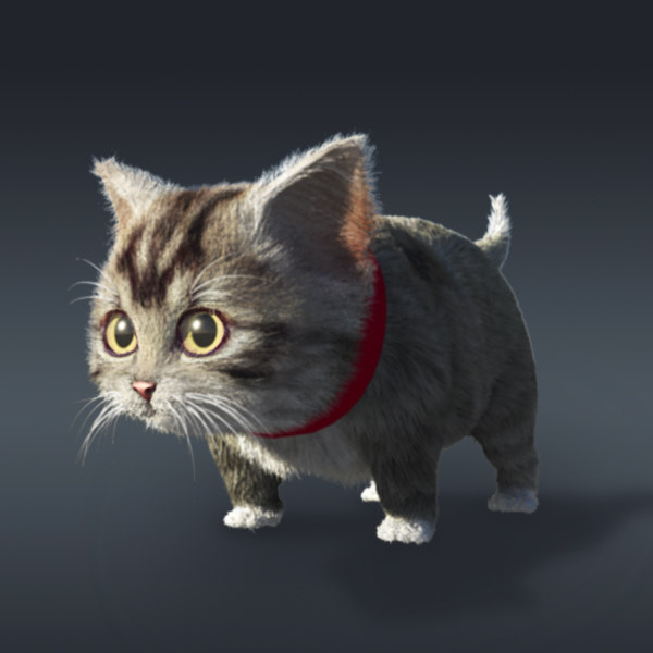 baby cat fur 3d model - cat... by goodwork