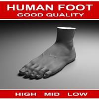 human foot 3d obj