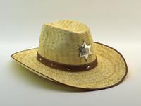 hat straw cowboy 3d max