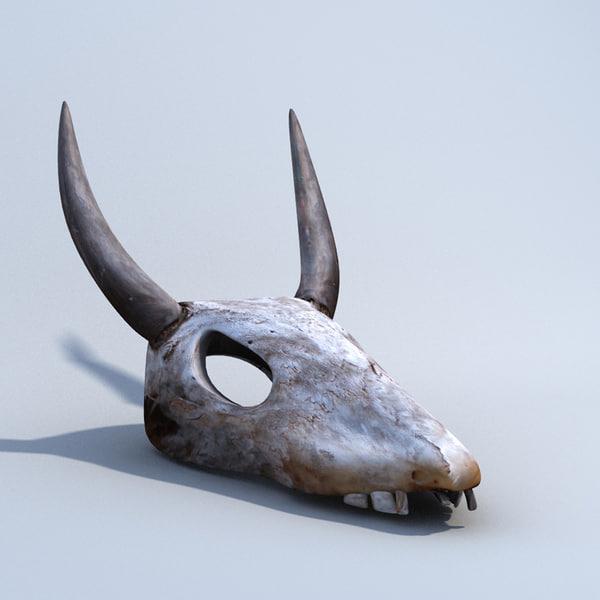 cow skull and desert - photo #37