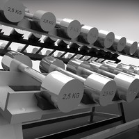 3d model dumbell rack