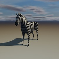 3d model zebra horse