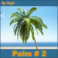 Palm # 2