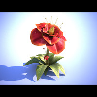 red flower 3d max