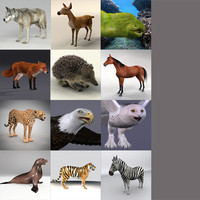 Animals Collection 0311