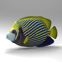 3d cheetah3d angelfish