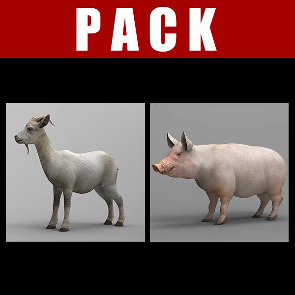 g_pack.jpg